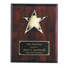 Rosewood Piano Finish Star Plaque