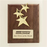 Star Constellation with 24K Gold Finished Walnut Plaque