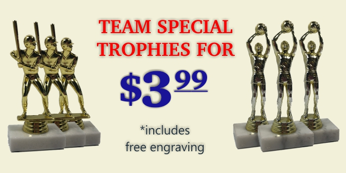 """SHIPS IN 1 BUSINESS DAY!!! FREE ENGRAVING! CUSTOM 15/"""" HAND BALL TROPHY"""